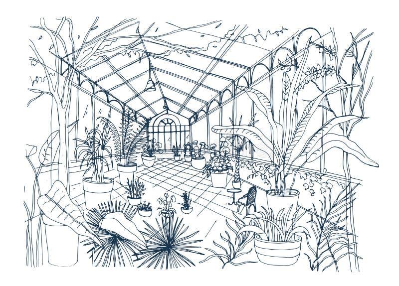 Esboço a mão livre do interior do jardim botânico tropical completamente de plantas cultivadas com folha luxúria Desenho áspero d ilustração royalty free