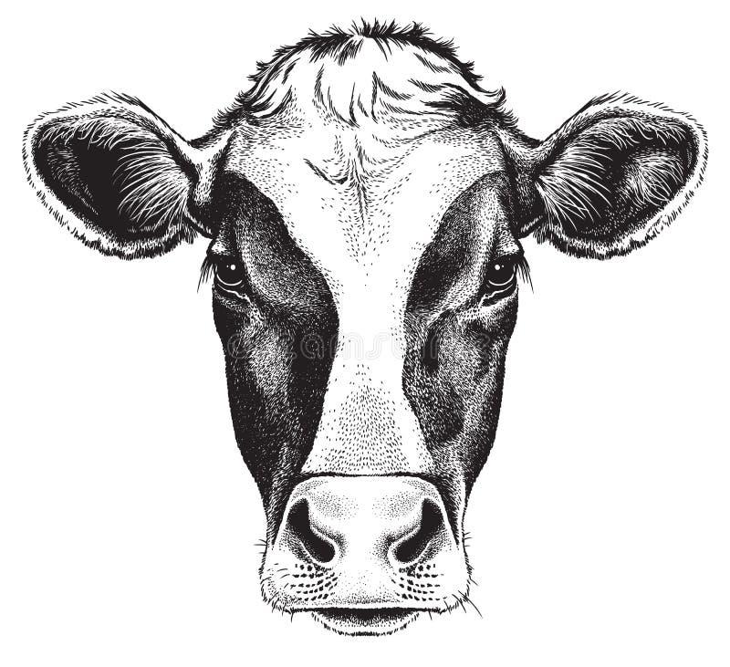 Esboço preto e branco da cara de uma vaca ilustração do vetor