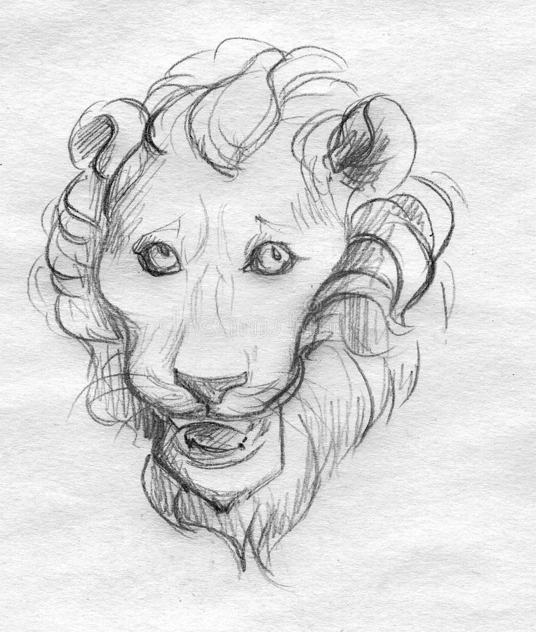 Esboço principal do lápis do leão ilustração royalty free