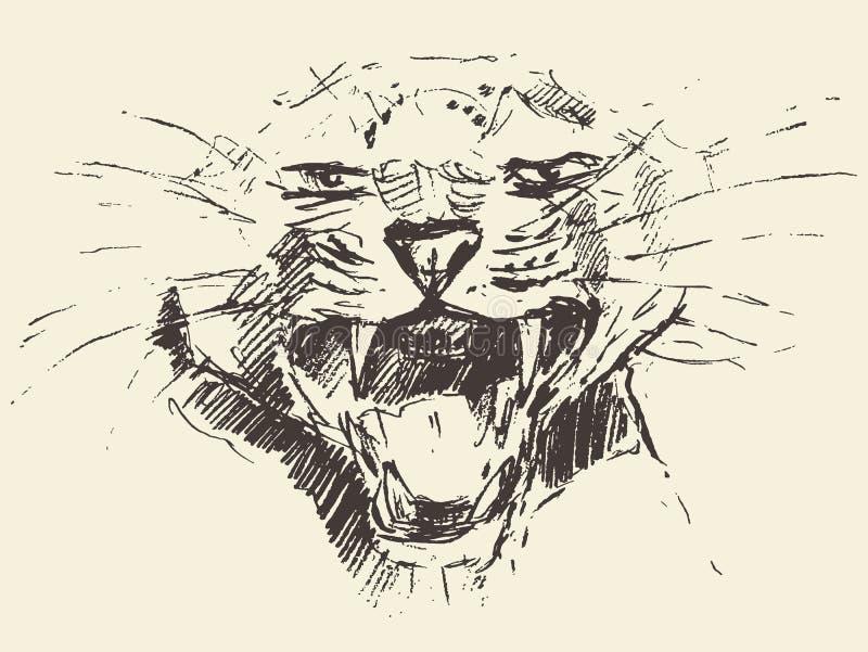 Esboço tirado estilo de ataque da pose da cabeça do leopardo ilustração stock