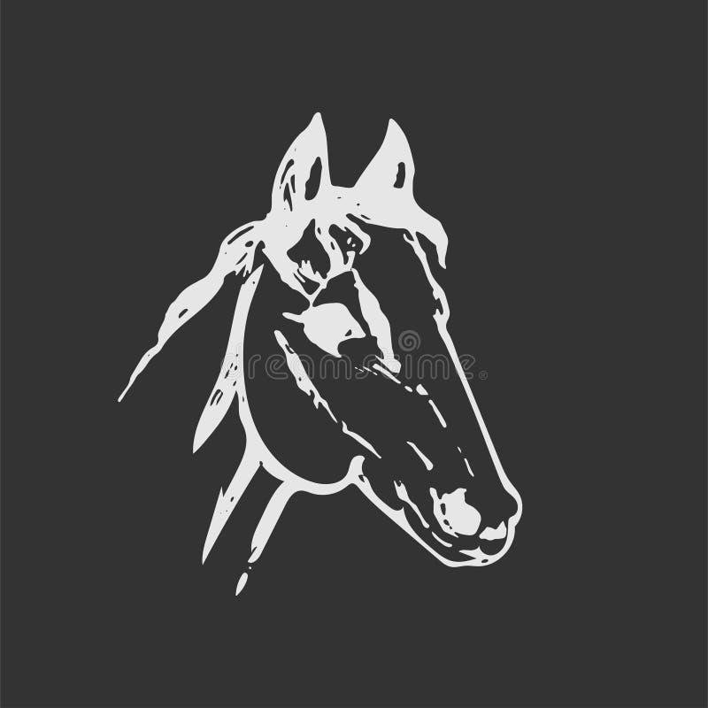 Esboço tirado mão da cabeça de cavalo A lápis desenho branco isolado na obscuridade - fundo cinzento Retrato do mustang Ilustraçã ilustração royalty free
