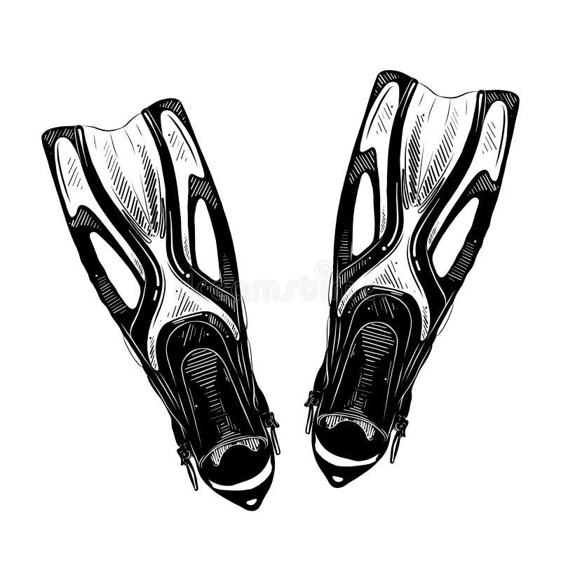 Esboço tirado mão das aletas no preto isoladas no fundo branco Desenho detalhado do estilo gravura a água-forte do vintage ilustração stock