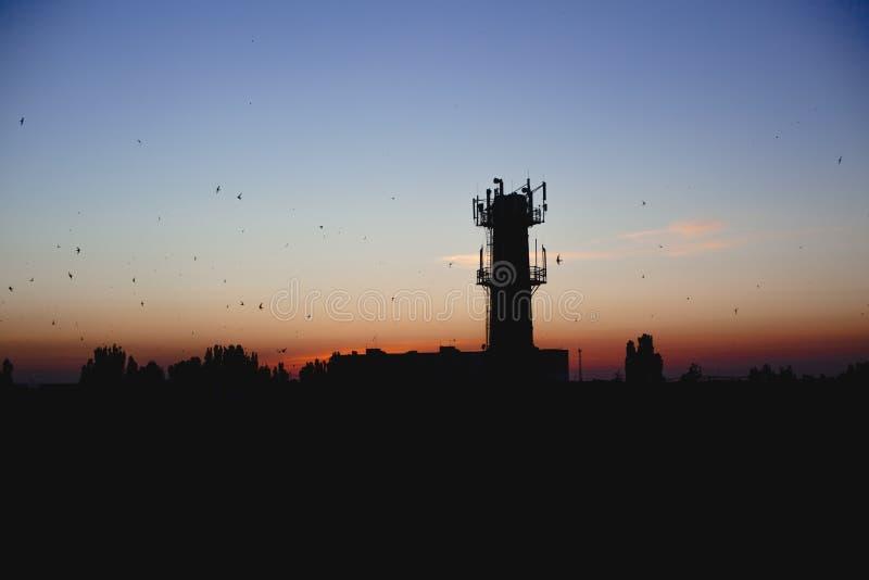 Esboços da cidade à vista da noite Torre e pássaros no fundo do céu do por do sol Cidade industrial foto de stock royalty free
