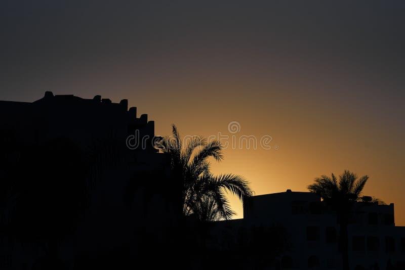 Esboços das palmeiras e casas do recurso no nascer do sol tropical fotos de stock