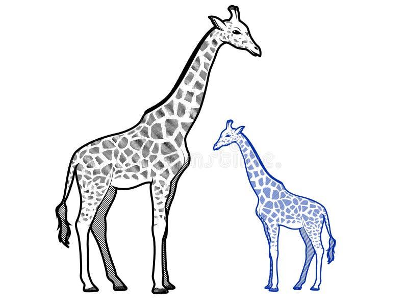 Esboços do Giraffe ilustração stock