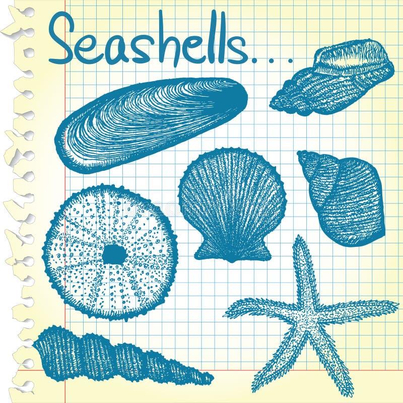 Esboços do Seashell ilustração royalty free