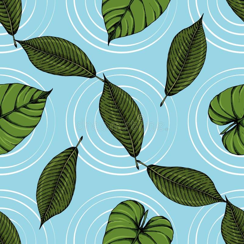 Esboços sem emenda 15 do teste padrão das folhas tropicais ilustração stock