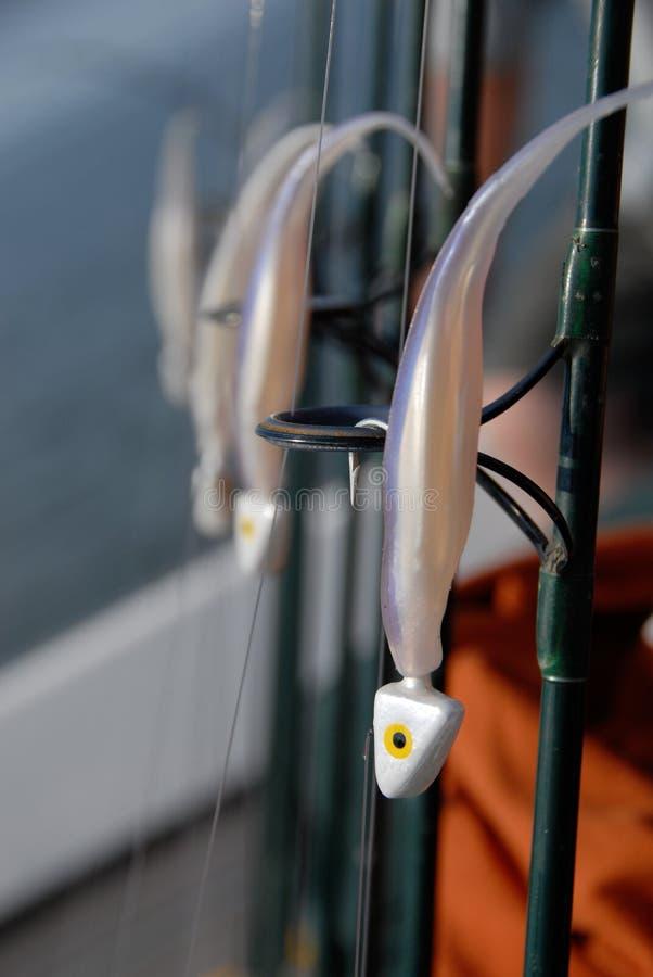 Esca e Rohi di pesca immagine stock