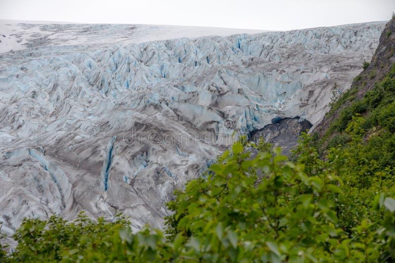 Esca il ghiacciaio visto dalla traccia ai prati della marmotta Seward, Alaska fotografie stock libere da diritti