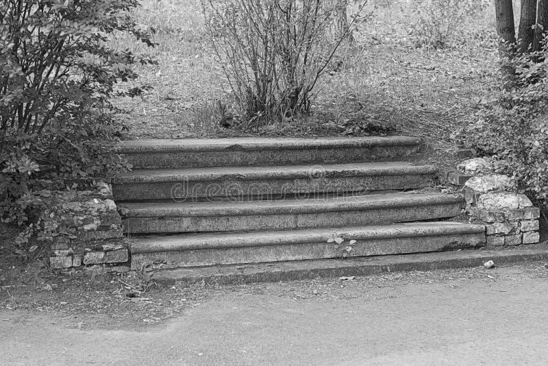 Escada abandonada imagem de stock