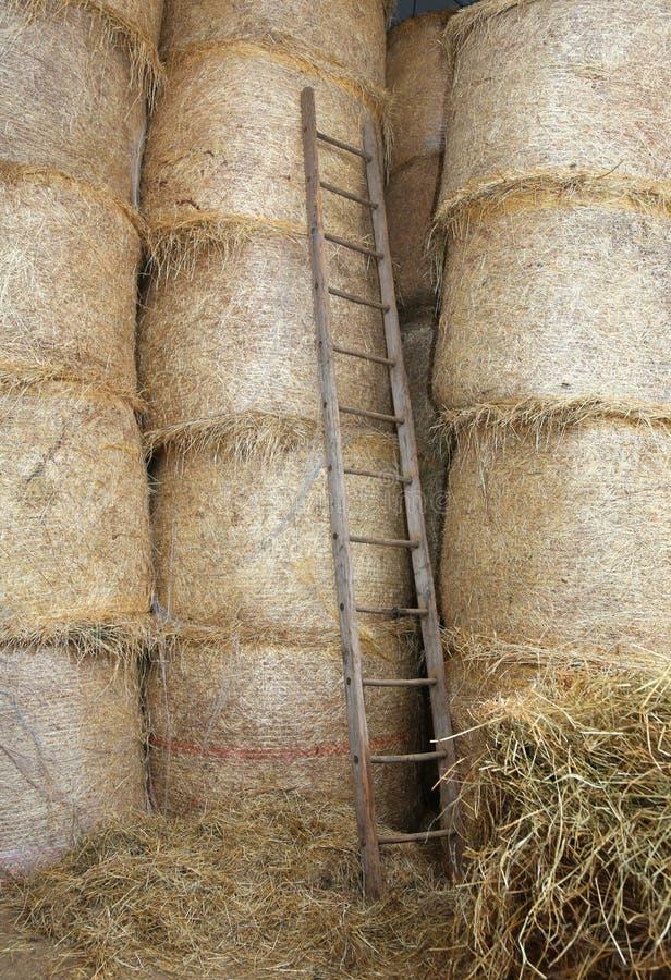escada de madeira no celeiro da exploração agrícola fotografia de stock royalty free