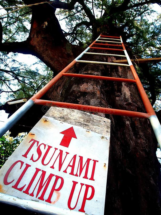 Escada do escape do tsunami foto de stock royalty free