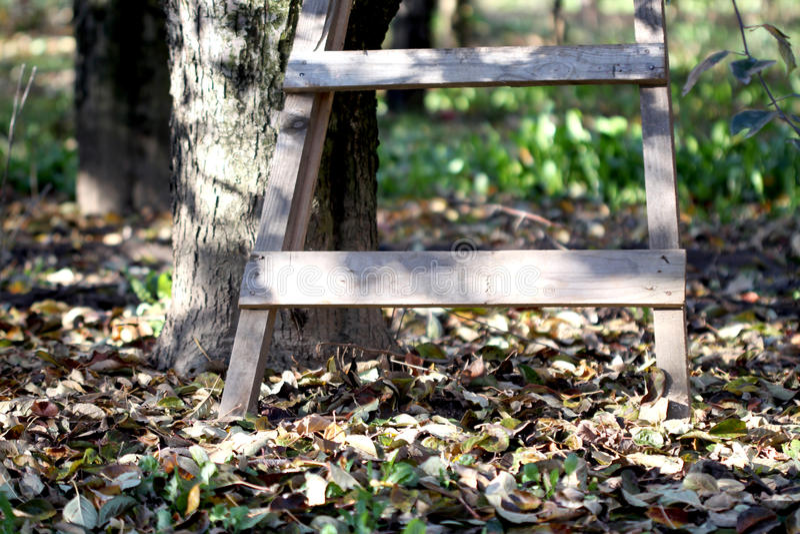 Escada no pomar no outono imagens de stock royalty free