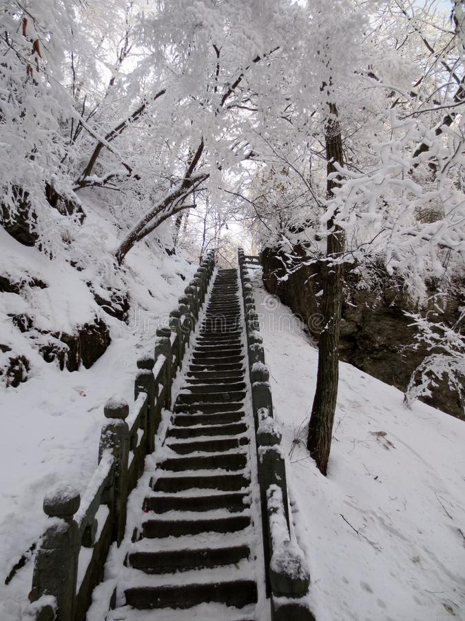 A escadaria antiga após a neve fotografia de stock royalty free