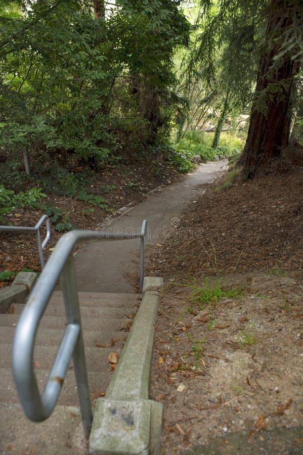 Escadaria ao longo do trajeto rural fotos de stock royalty free