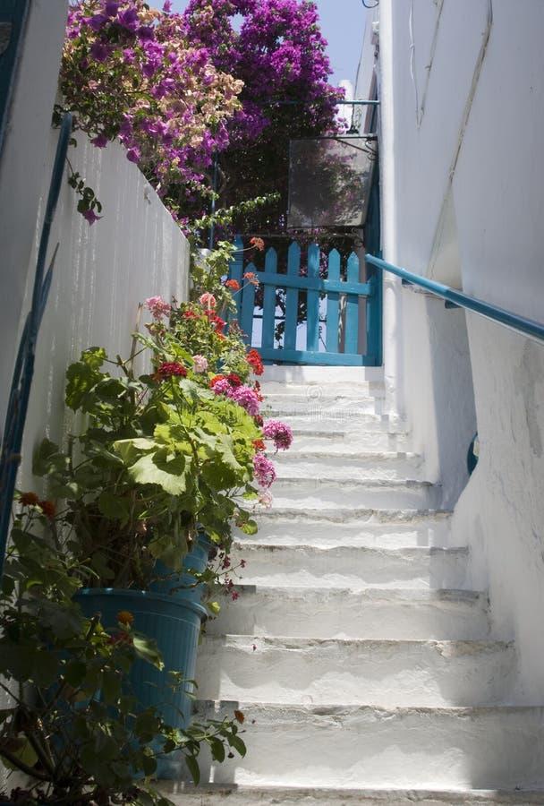 Escadaria com flores imagens de stock