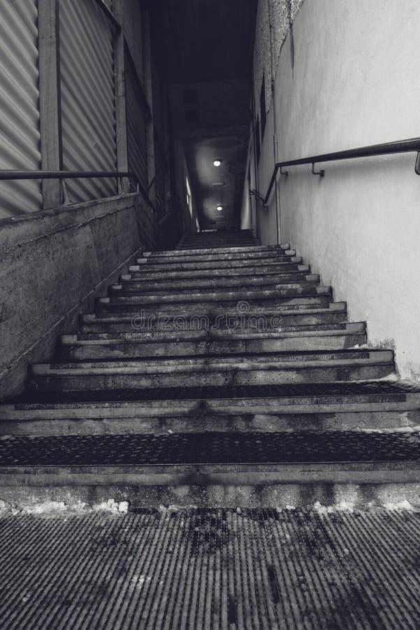Escadaria concreta do armazém industrial, preto e branco foto de stock