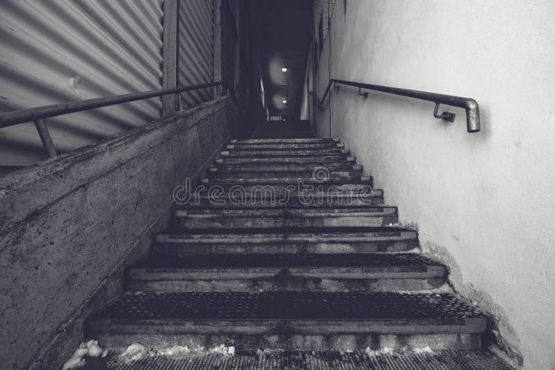 Escadaria concreta do armazém industrial, preto e branco imagens de stock
