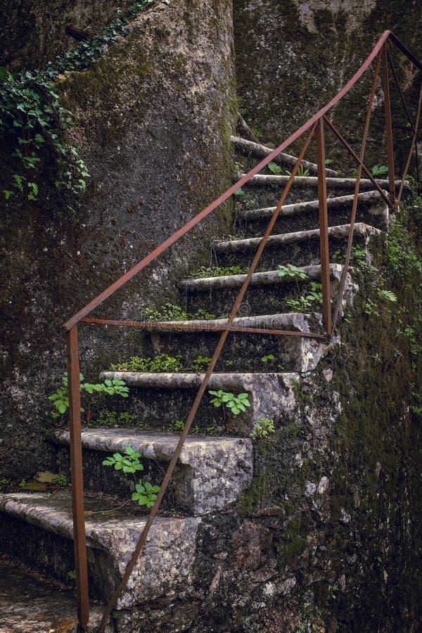 Escadaria da queda fotos de stock royalty free