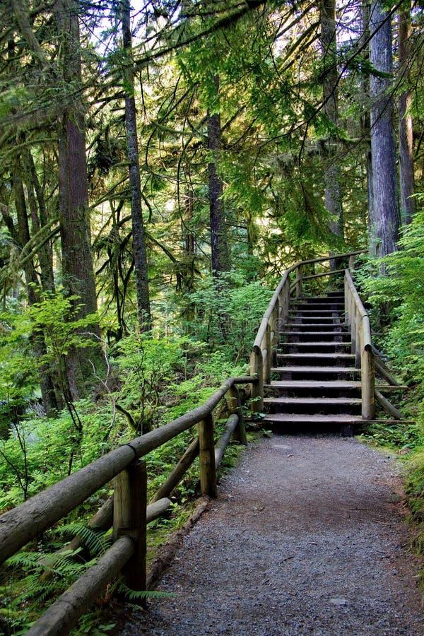 Escadaria de madeira em uma fuga pedestre fotos de stock royalty free