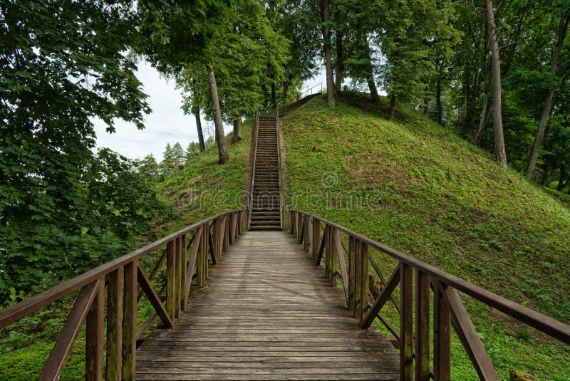 Escadaria de madeira, monte de Vytautas, Birstonas Lituânia fotografia de stock royalty free