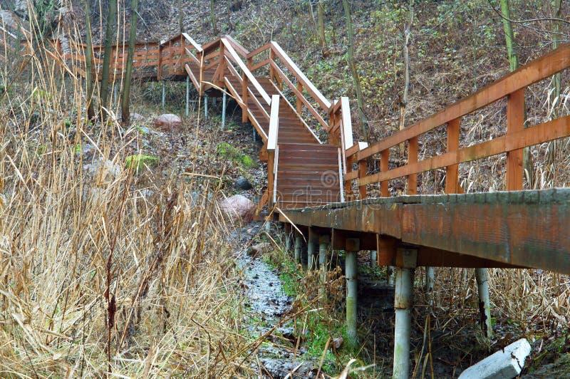 Escadaria de madeira na costa imagem de stock