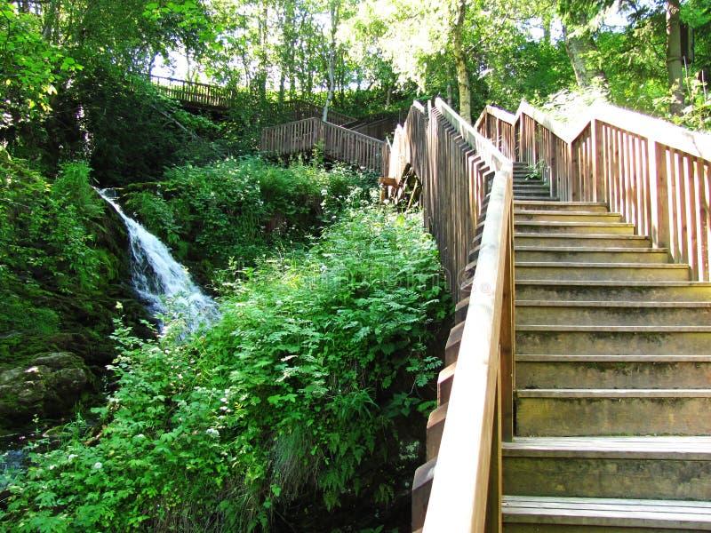 Escadaria de madeira perto das cachoeiras imagens de stock royalty free