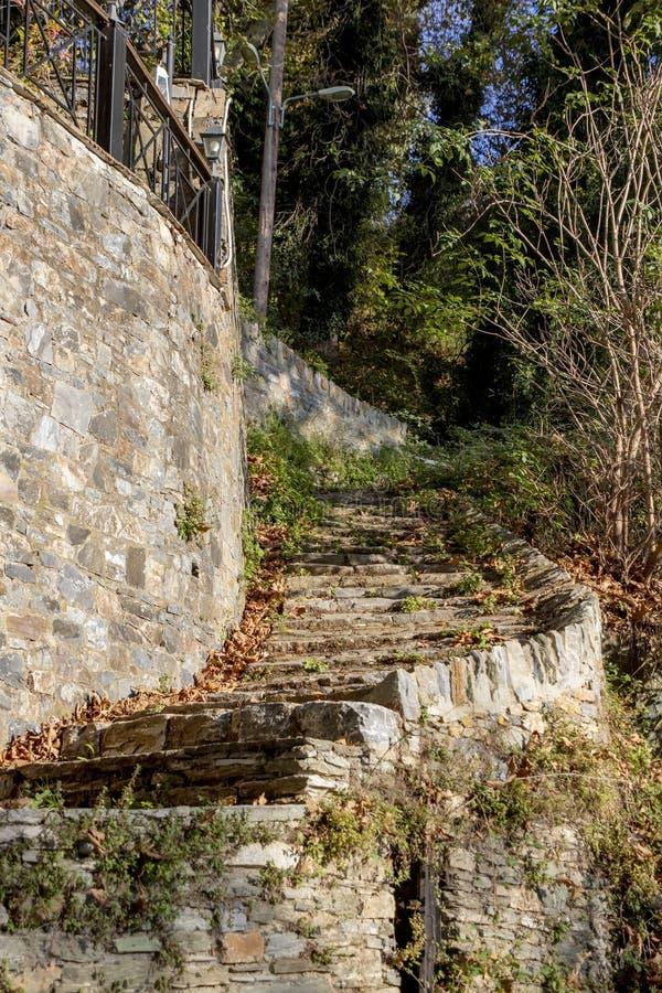 Escadaria espiral com as etapas de pedra cobertas com as folhas secas amarelas fotos de stock royalty free