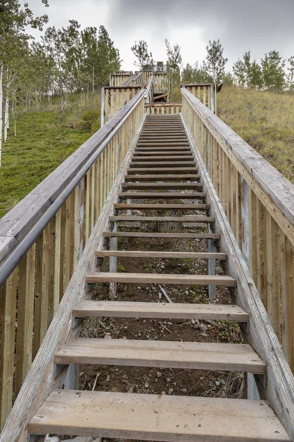 Escadaria grande em cinco corredeiras do dedo A escadaria a maior em Yukon foto de stock