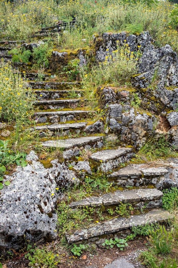 Escadas da pedra cobertos de vegetação com as ervas e a grama selvagens imagens de stock royalty free