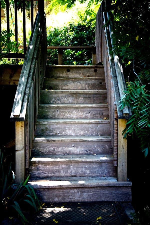 Escadas de madeira fotos de stock royalty free