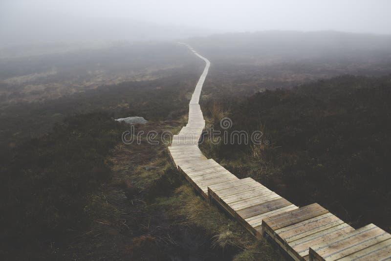 Escadas De Madeira De Brown No Corpo Da Montanha Domínio Público Cc0 Imagem