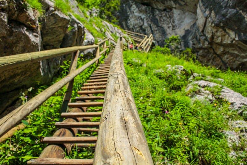 escadas de madeira em um penhasco foto de stock royalty free