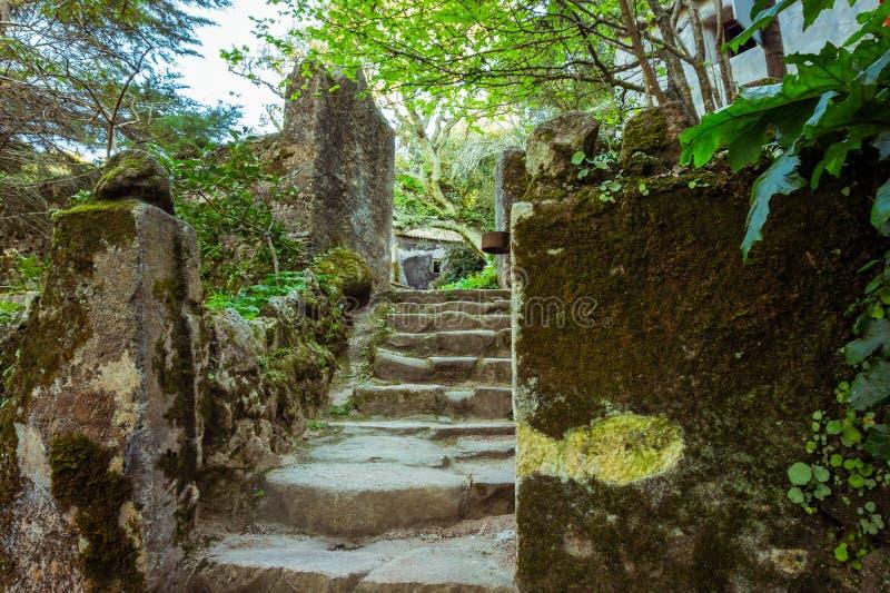 Escadas de pedra cobertas de musgo no mosteiro de Capuchin em Sintra, Portugal foto de stock royalty free