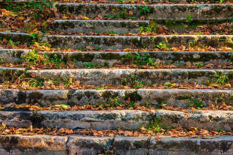 Escadas de pedra dilapidadas espalhadas com folhas secas foto de stock
