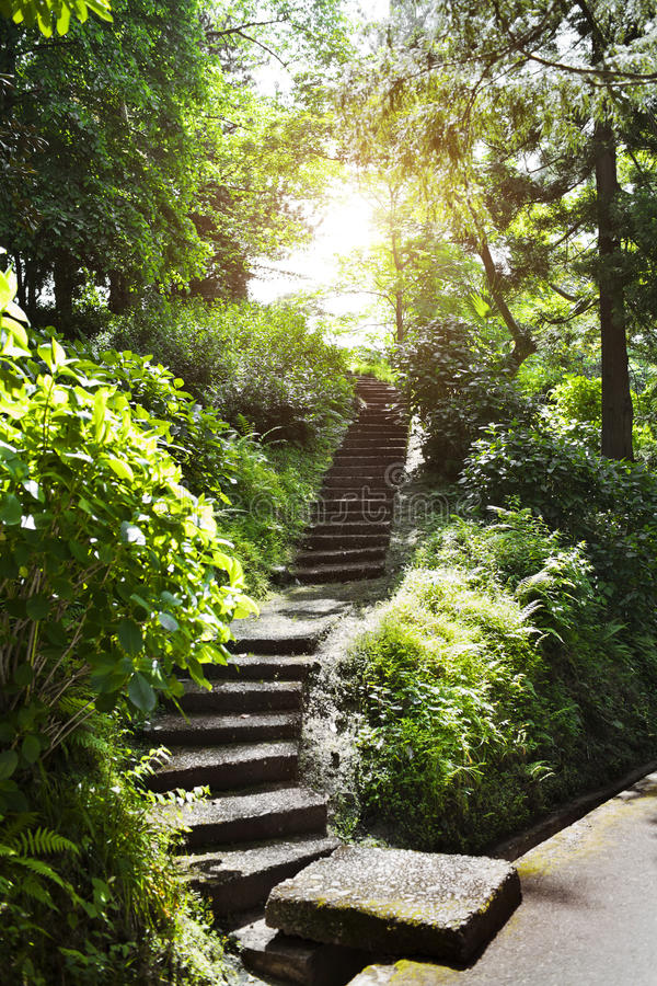 Escadas de pedra no parque fotos de stock royalty free