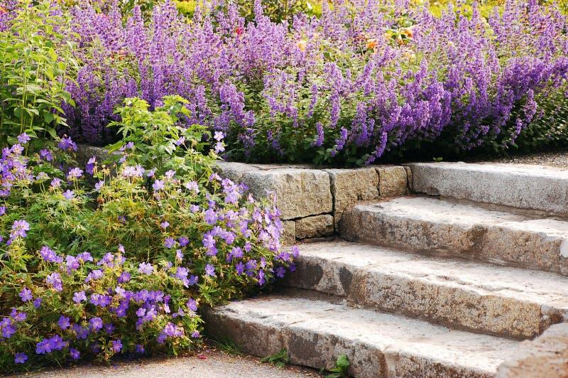 Escadas do jardim fotos de stock royalty free