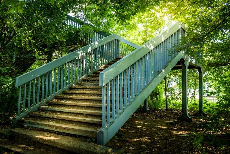 Escadas do metal nas madeiras fotos de stock