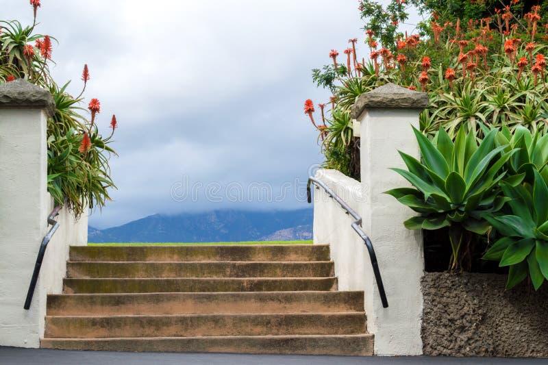 Escadas em um jardim tropical luxúria em um dia nebuloso imagens de stock royalty free