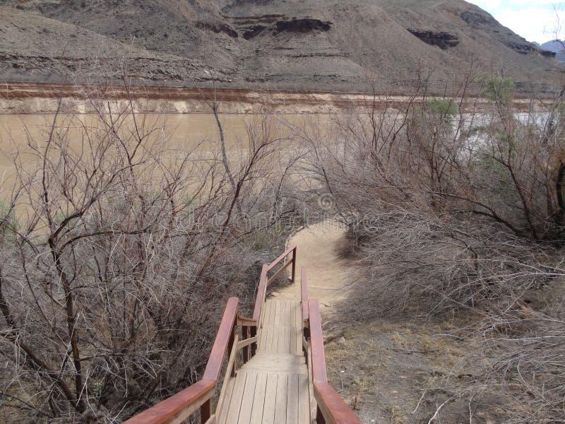 Escadas a Grand Canyon fotos de stock royalty free