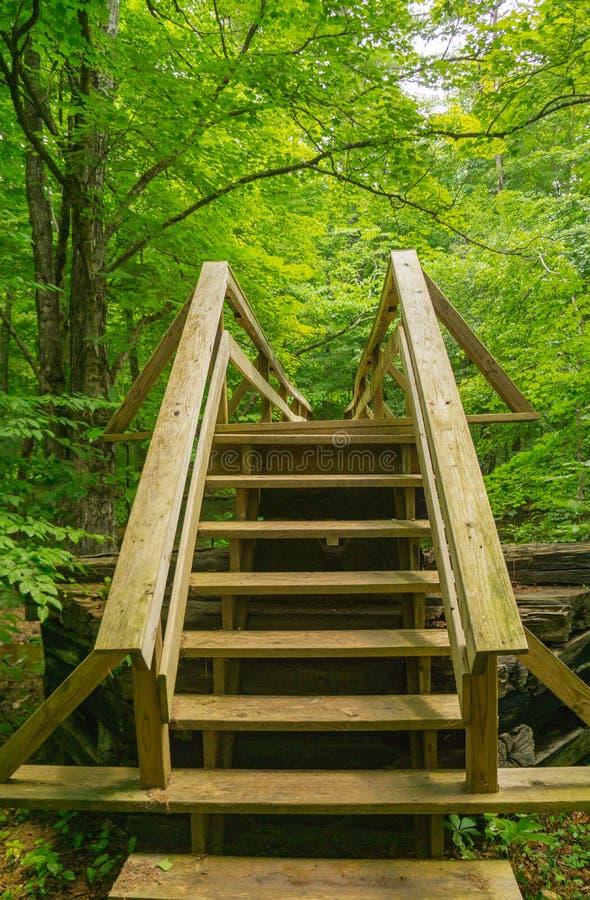 Escadas novas no passadiço do caminhante ao longo da fuga apalaches imagens de stock