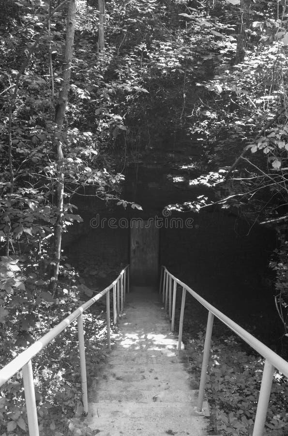 Escadas para baixo à porta escura assustador preto e branco imagem de stock