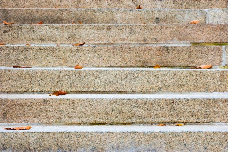 Escadas vazias com algumas folhas secas nele foto de stock royalty free