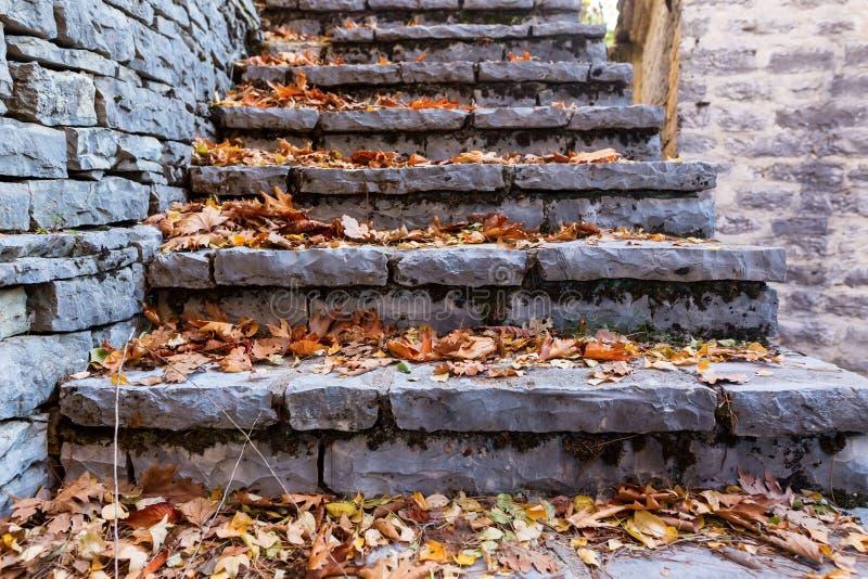 Escadas velhas no parque coberto com as folhas de bordo amarelas outono concentrado imagem de stock