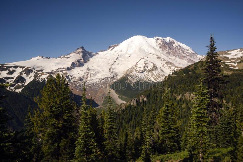 Escala alta o Monte Rainier da cascata da montanha de Burroughs da fuga fotografia de stock royalty free