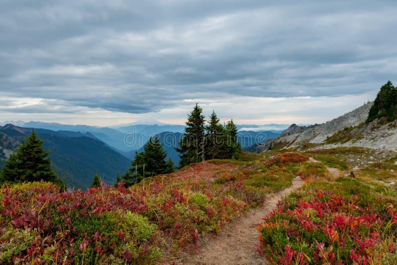 Escala de Autumn Colors Line Trai Through Tatoosh imagem de stock