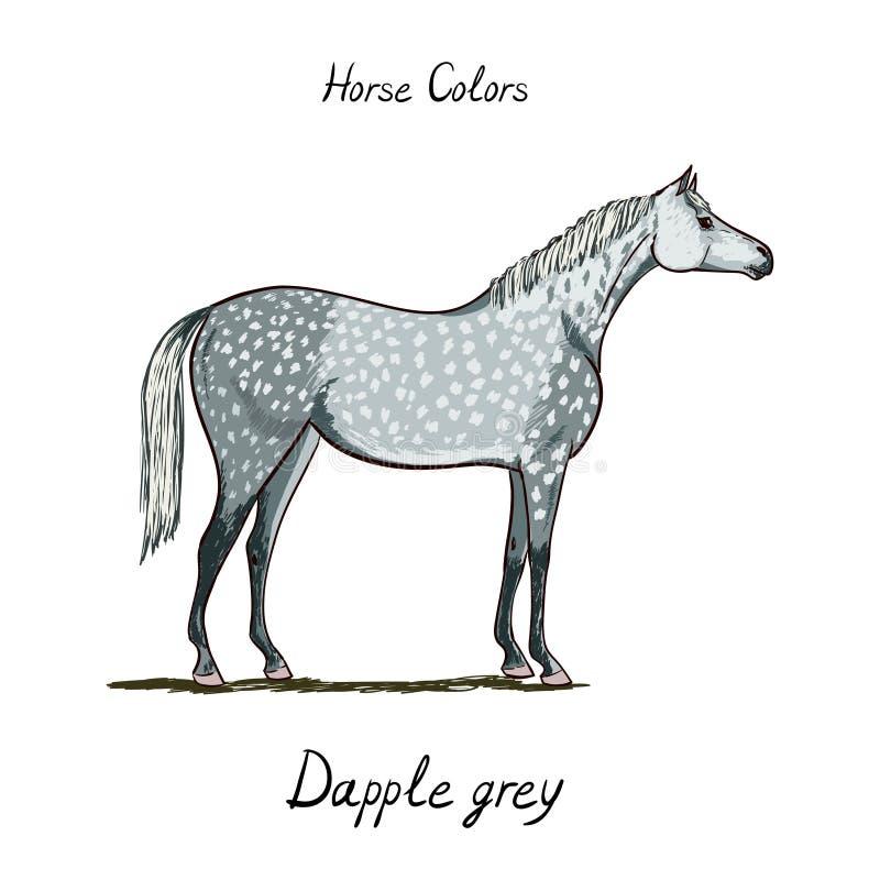 Escala de cores do cavalo no branco Equino dapple a cor cinzenta do revestimento com texto ilustração do vetor