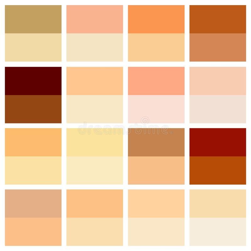 Escala de cores do tom de pele Paleta infographic da cor humana da textura da pele Projeto facial do cuidado ilustração royalty free