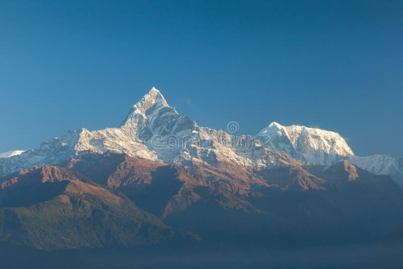 Escala de Machapuchare e de Annapurna foto de stock royalty free