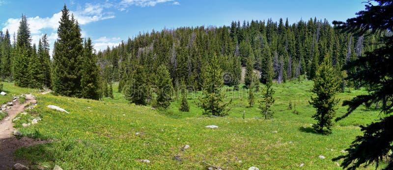 Escala de Wind River, Rocky Mountains, Wyoming, vistas da fuga de caminhada backpacking à bacia de Titcomb de ir de Trailhead do  foto de stock